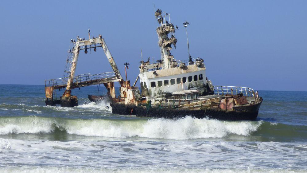 Schiffswrack mit Kormoranen vor der Skelettküste Namibias