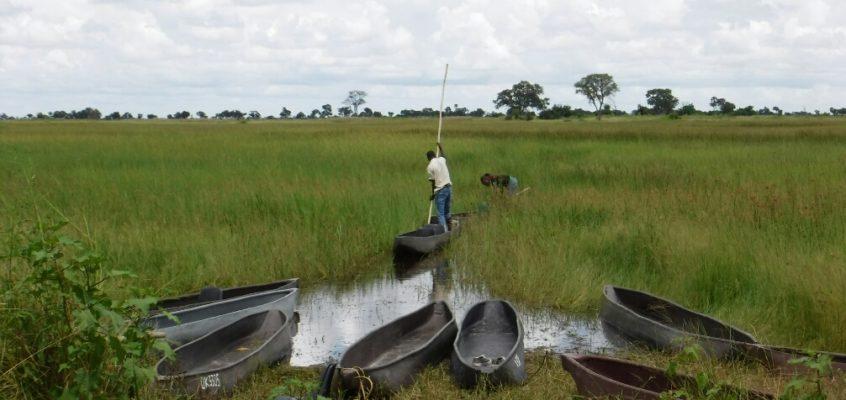 Eine Nacht im Okavango-Delta