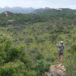 Noch mehr Abenteuer im Matobo-Nationalpark