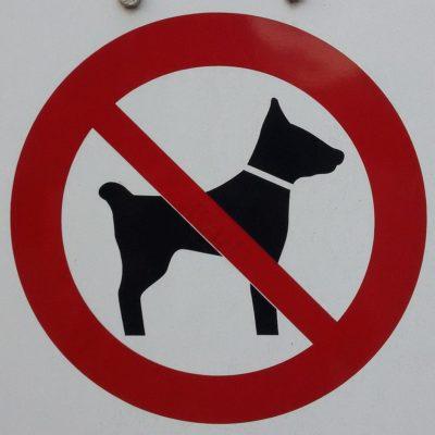 Hunde verboten! (Deutschland)